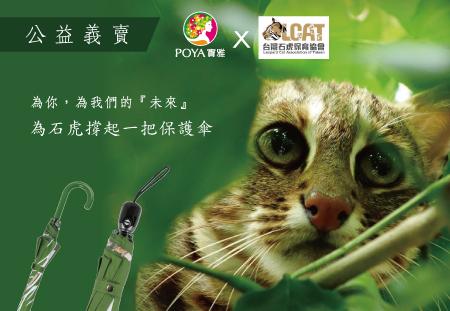 大振豐洋傘xPOYA寶雅義賣「發現石虎手繪傘」,捐5%所得予台灣石虎保育協會
